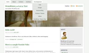 Wordpress themes MistyLook