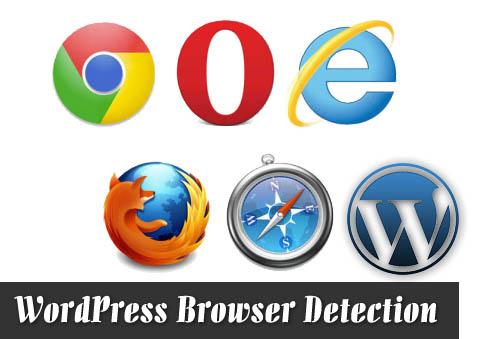 让WordPress识别用户浏览器类型
