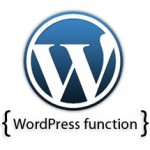 wordpress functions