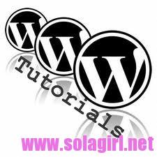 WordPress进阶教程
