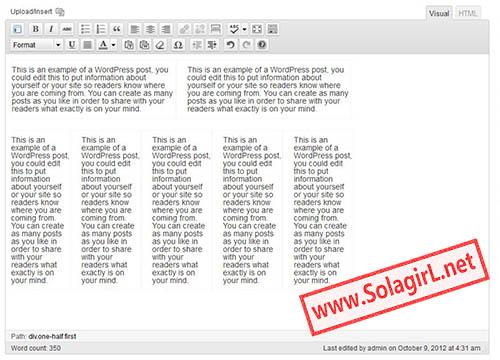 在编辑器中插入两栏和五栏模板