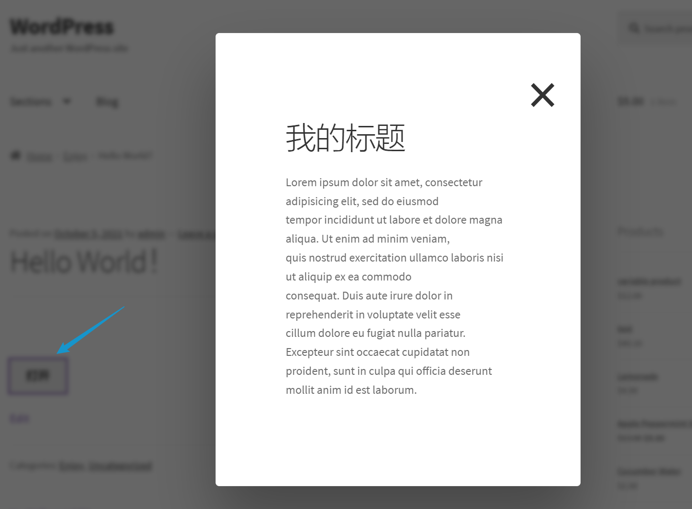 WordPress Popup Box前台效果
